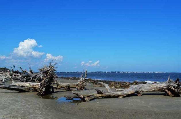 driftwood-beach-jekyll-island-e