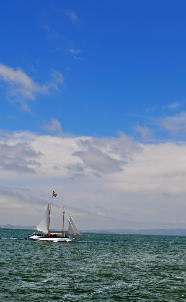 Sailboat-on-San-Francisco-Bay